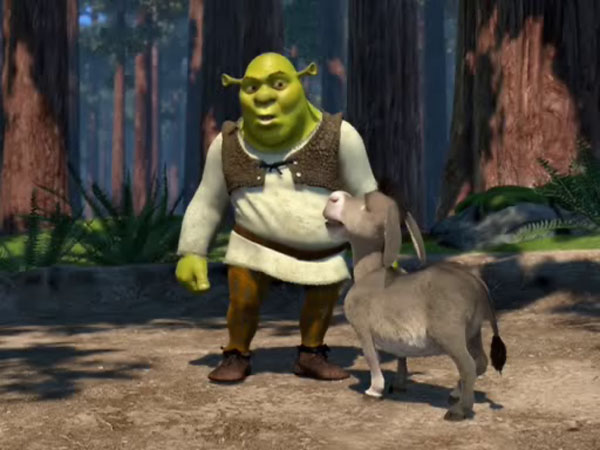 Shrek & the Donkey